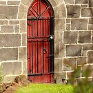 Red Door by Alison Howson