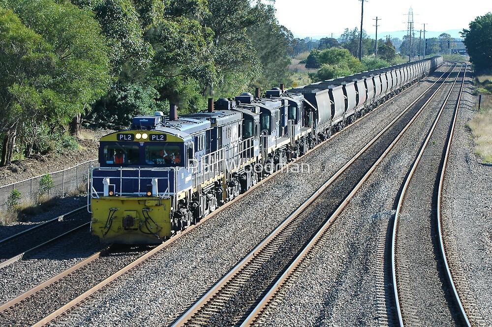 Coal Train - Hexham NSW by Phil Woodman