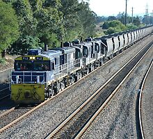 Coal Train - Hexham NSW by Phil Woodman