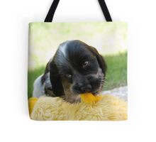 winnie and her duck Tote Bag