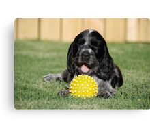 winnie and her ball Canvas Print