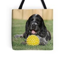winnie and her ball Tote Bag