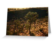 Desert Oaks Greeting Card
