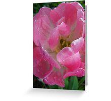 Pink Freshness Greeting Card