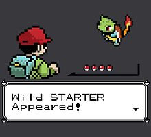 Wild Starter Pokemon Appeared! by RetroReview