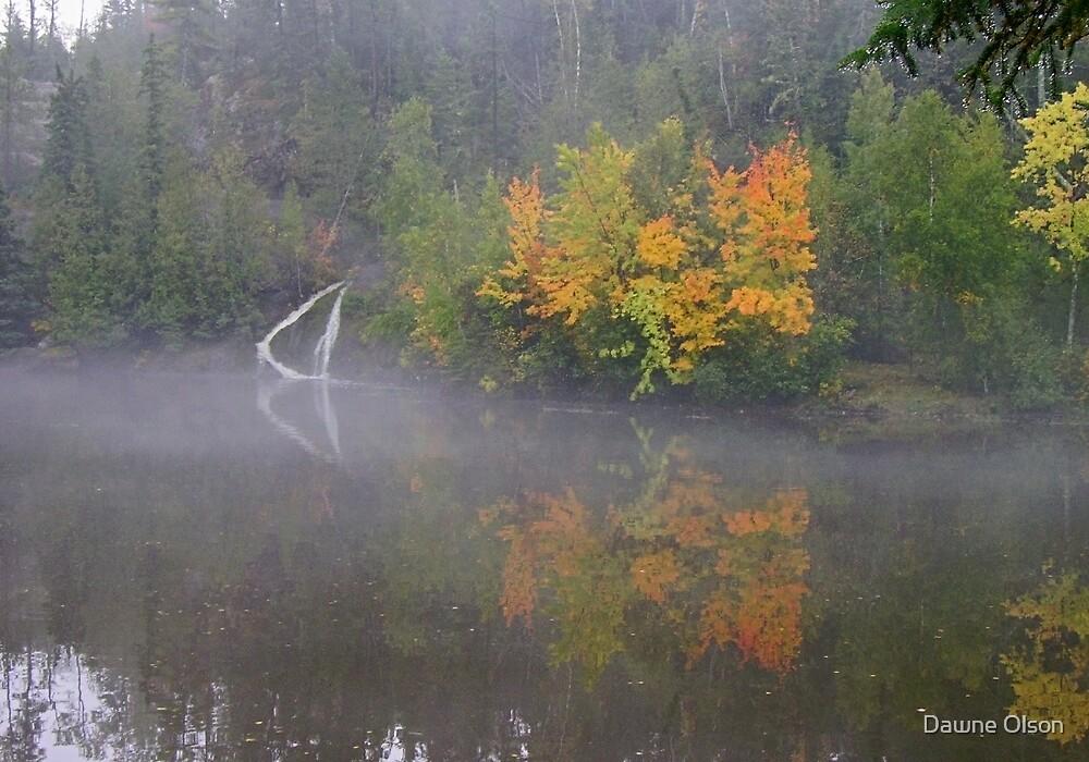 Autumn Dream by Dawne Olson