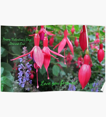 Fuchsias Valentine Card - Love You Forever! (Floral) Poster