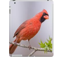 Rumor Mill iPad Case/Skin