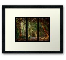Wild Weald at Grym's Dyke Framed Print