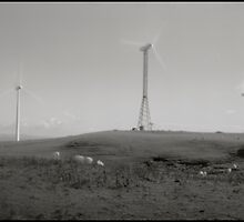 Wind Farm Feilding New Zealand Pinhole by gldfshbob