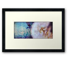 Dandelion Fossil Framed Print