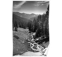 Alpine Glade Poster
