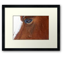 Big Brown Eyed Gal Framed Print