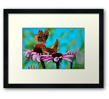BFF Best Friend Fritillaries  Framed Print