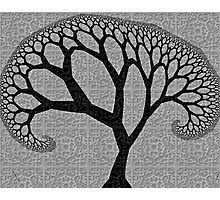 Tree Tile One Photographic Print