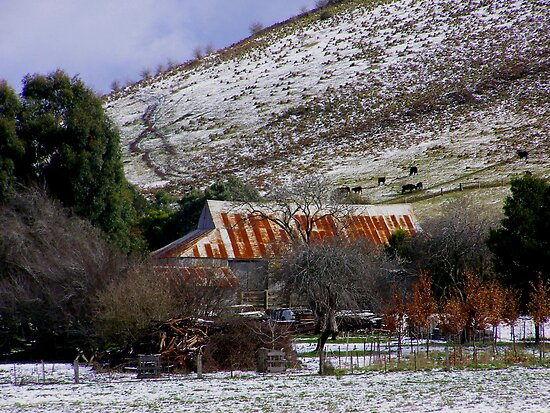 Rusty Shed.. by Kristina K