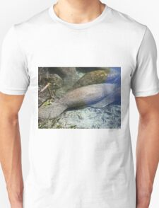 Manatee Ripples T-Shirt