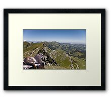 971-Cougar Heights Framed Print