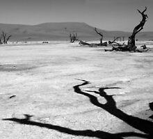 Shadows Of The Past  by aidan  moran