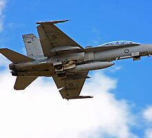 F-18 - Williamtown RAAF Base by Steve D