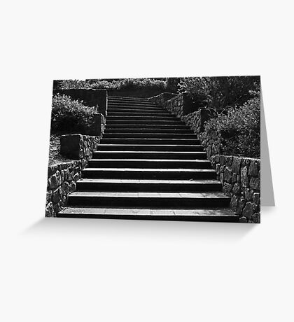 Kings Park Stairs  Greeting Card