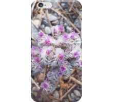 Pussy Paws Wildflower iPhone Case/Skin