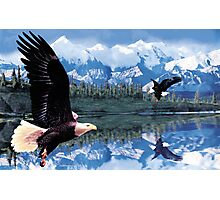 Eagle fight Photographic Print