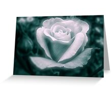 Rose of Time Greeting Card
