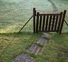 morning path by Cornelia Togea