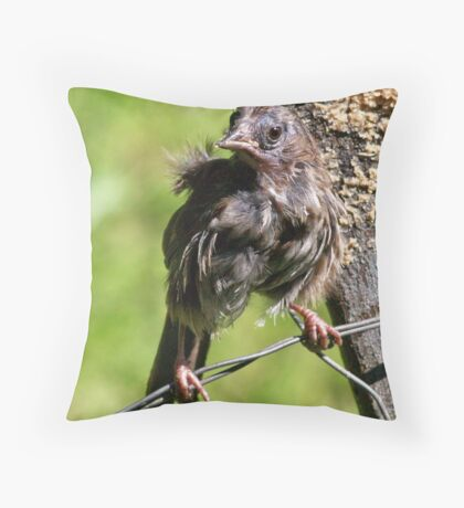 *SOME OF US ARE JUST BORN BEAUTIFUL* Throw Pillow