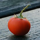 Mini Tomato by ssphotographics
