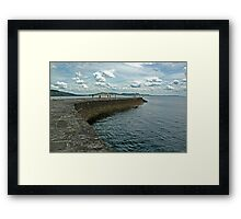 the cob Framed Print