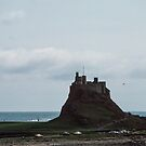 Castle on Holy Isle Northumbria England 198405290016 by Fred Mitchell