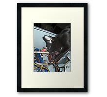 Lil Bear Helps Fix Computer Framed Print