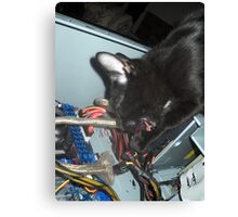 Lil Bear Helps Fix Computer Canvas Print