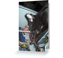 Lil Bear Helps Fix Computer Greeting Card