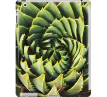 Spiral succulent iPad Case/Skin