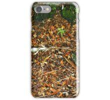 Wet undergrowth iPhone Case/Skin