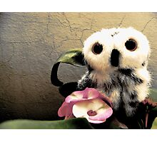 Ophelia's Pink Friends Photographic Print