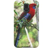Crimson Rosella - Wilsons Promontory National Park Samsung Galaxy Case/Skin