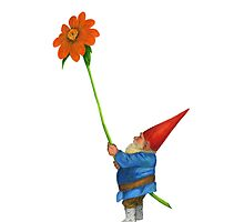 Gnome with Mexican Sunflower by matthewisles