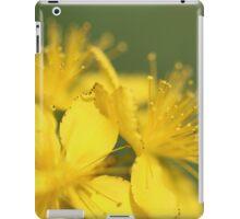 St John's Wort, (Hypericum perforatum) iPad Case/Skin