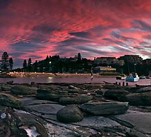 Terrigal Beach, Central Coast, NSW by Matt  Lauder