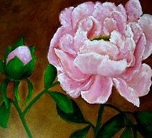 Peonies by Marita McVeigh