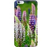 Wild Lupins II iPhone Case/Skin