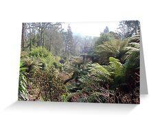 Heligan Gardens Greeting Card