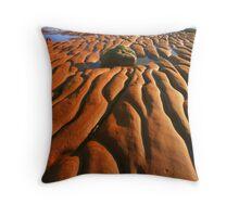 The Jurassic Beach, Devon  Throw Pillow