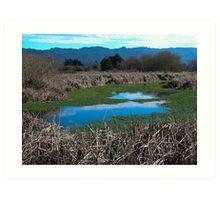 Arcata Marsh, Arcata, CA Art Print