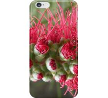 Beauty Emerging. iPhone Case/Skin