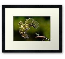 Dragon and Knight Framed Print